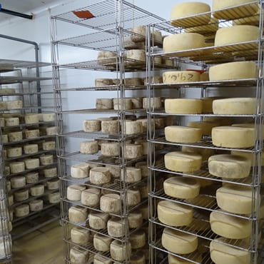 fromage pur brebis bayonne